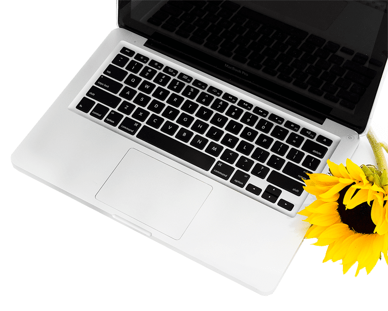 Web Development Services | EMG Design